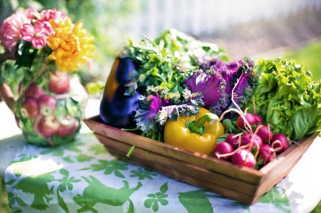 vegetables, garden, harvest